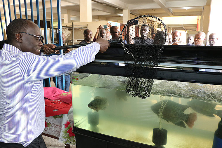 Dr Esau Galukande, KCCA deputy director for production and marketing attempts to fish from the live fish sales outlet at Wandegeya Market