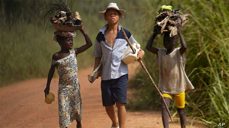 In this June 30, 2005 file photo, children living in a cocoa producing village walk back from the fields carrying wood and food stuff in Oume, Ivory Coast