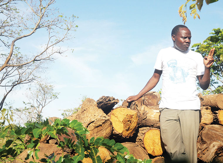 Alfred Odoch, speaker for Amuru town council, says some local leaders connive with businesspeople to cut trees and endanger the environment